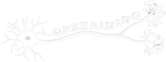 Upbraining - Formations en ligne